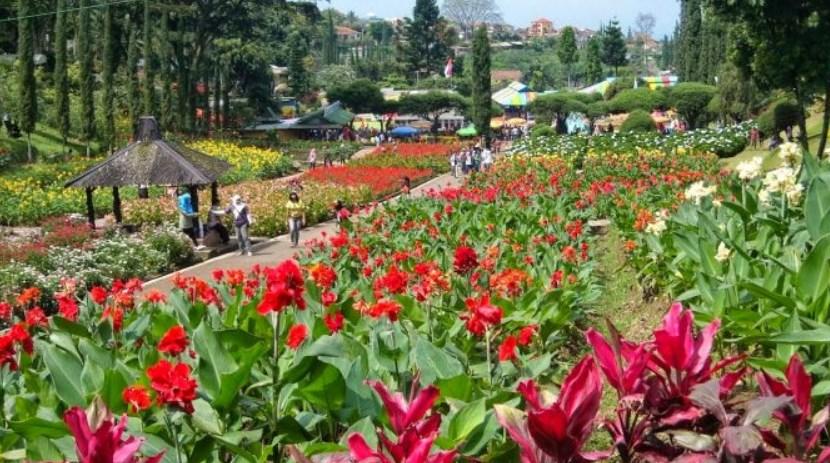 Kota Bunga Tomohon Sulawesi Utara