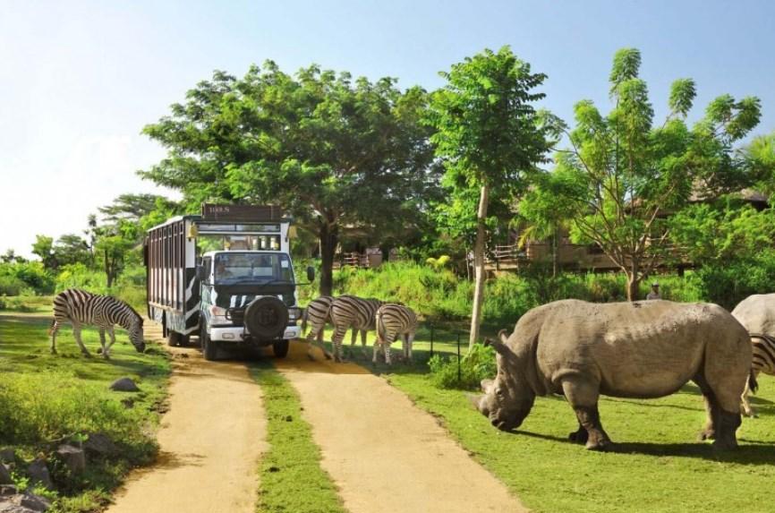 Kebun Raya Cisarua Tempat Wisata di Bogor