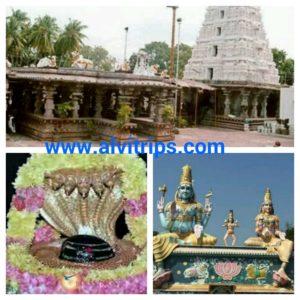 मल्लिकार्जुन मंदिर के सुंदर दृश्य