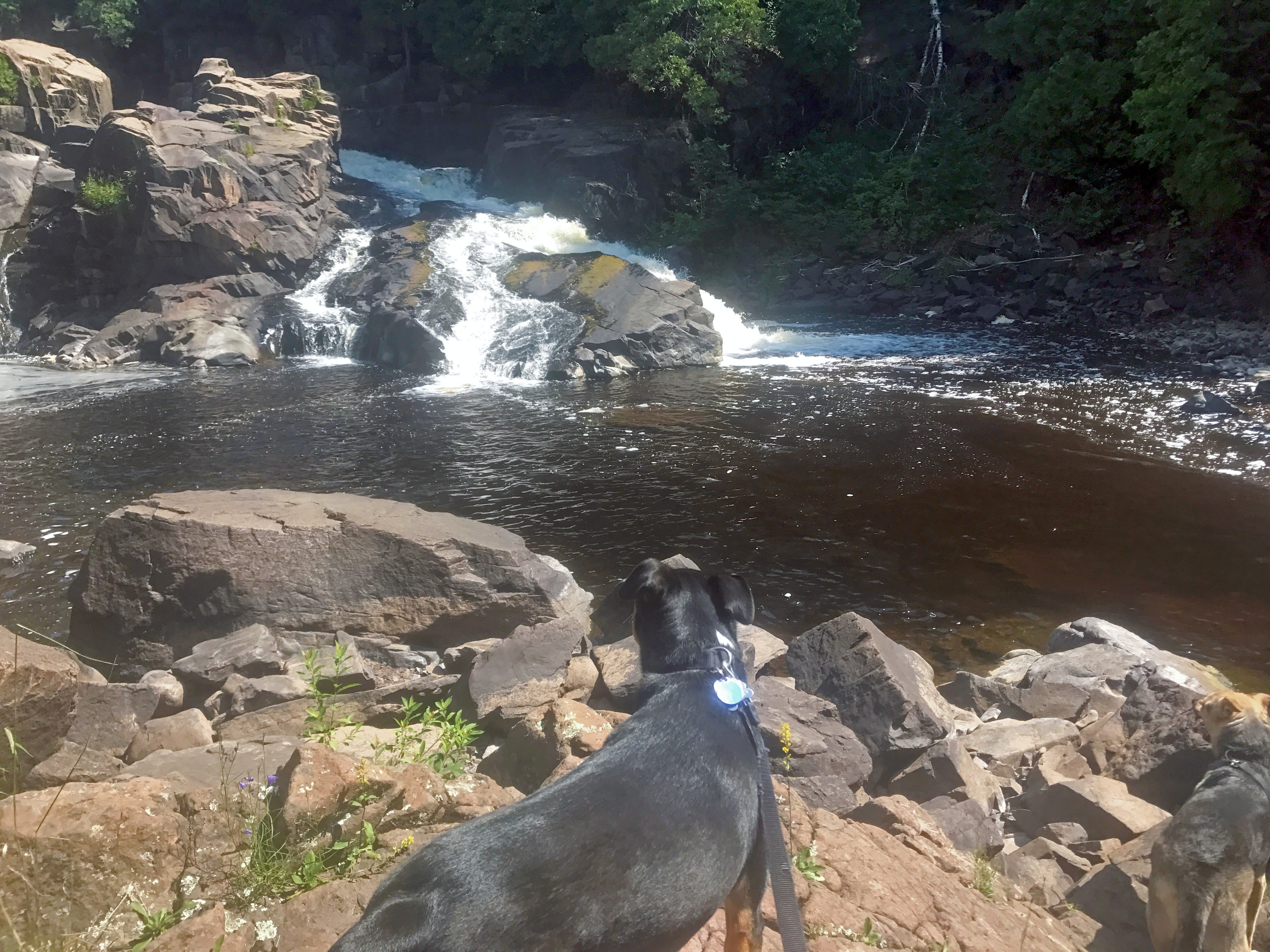 Wolfpack Explorations: Minnesota State Parks