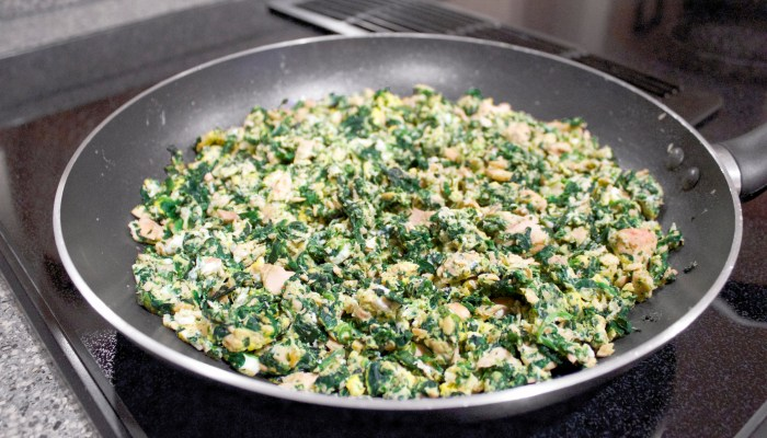 Homemade Dog Food: Super Simple Salmon Scramble