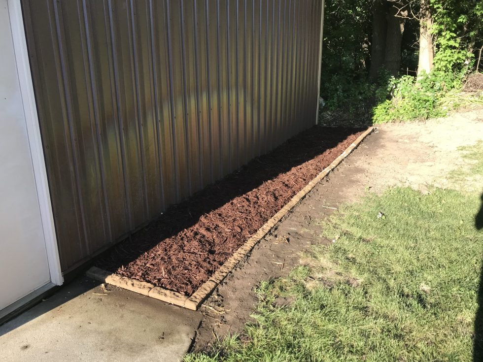 A newly edged garden bed