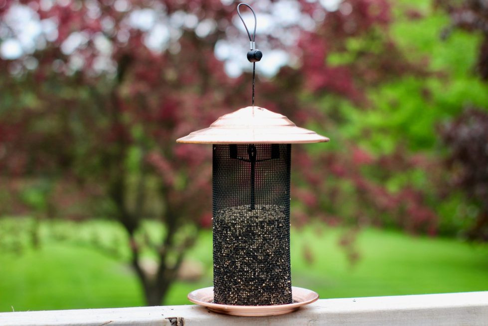 A mesh-style tube bird feeder filled with Nyjer seed, sitting on a ledge in front of a tree.