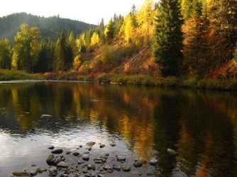 The Grande Ronde River in the fall is beautiful and full of steelhead