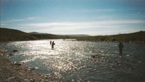 Three men fly fishing in a tundra stream for Rainbow trout in Alaska