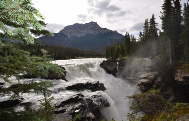 Top of the Athabasca Falls