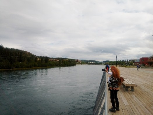 Boardwalk along the Yukon river in Whitehorse
