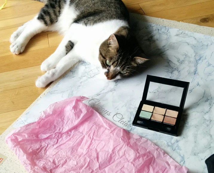 Maybelline Master Camo Color Correcting Kit Resident Cat