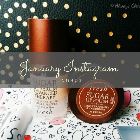 January Instagram Recap