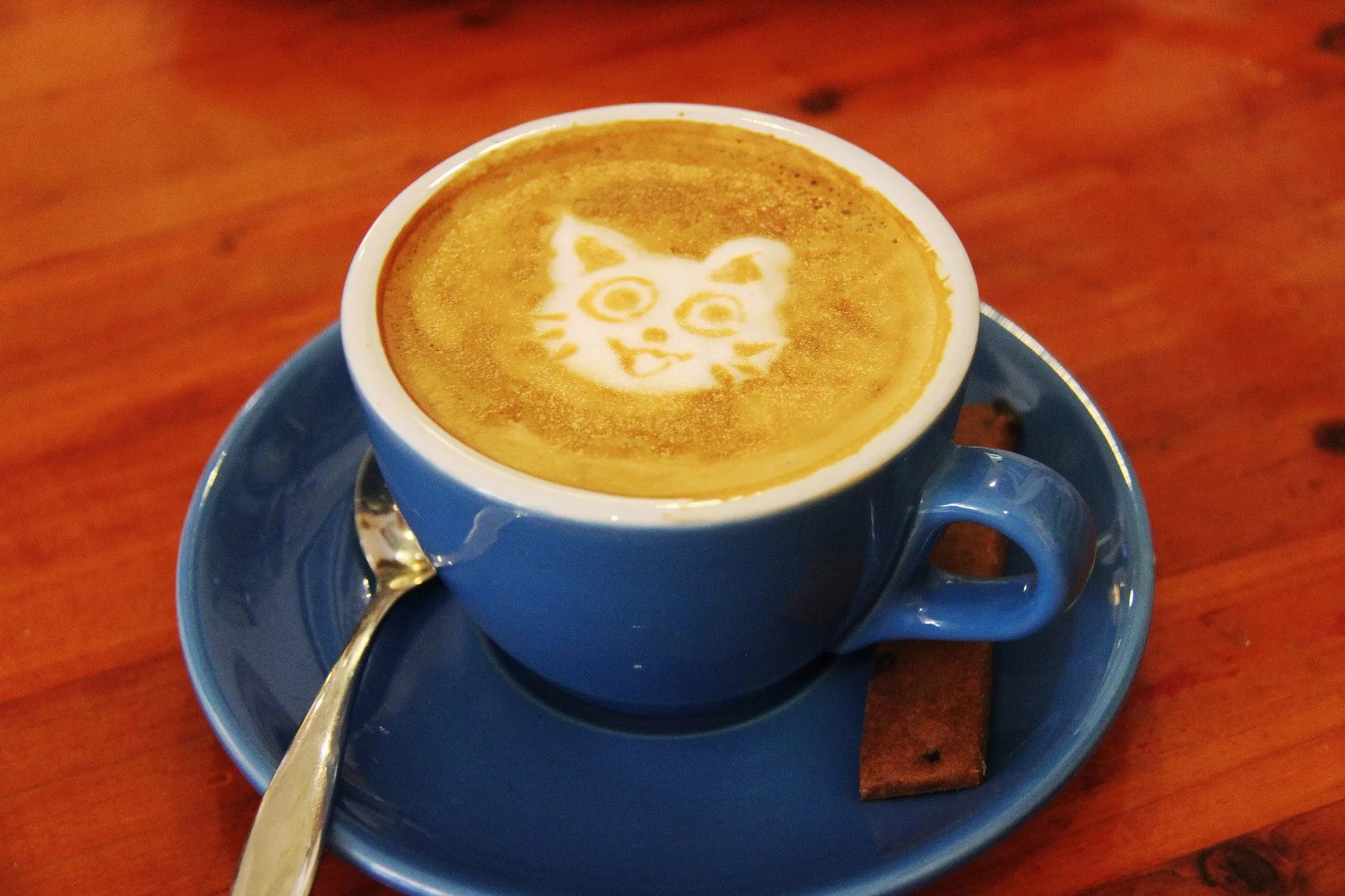 Coffee - Cat Latte Art