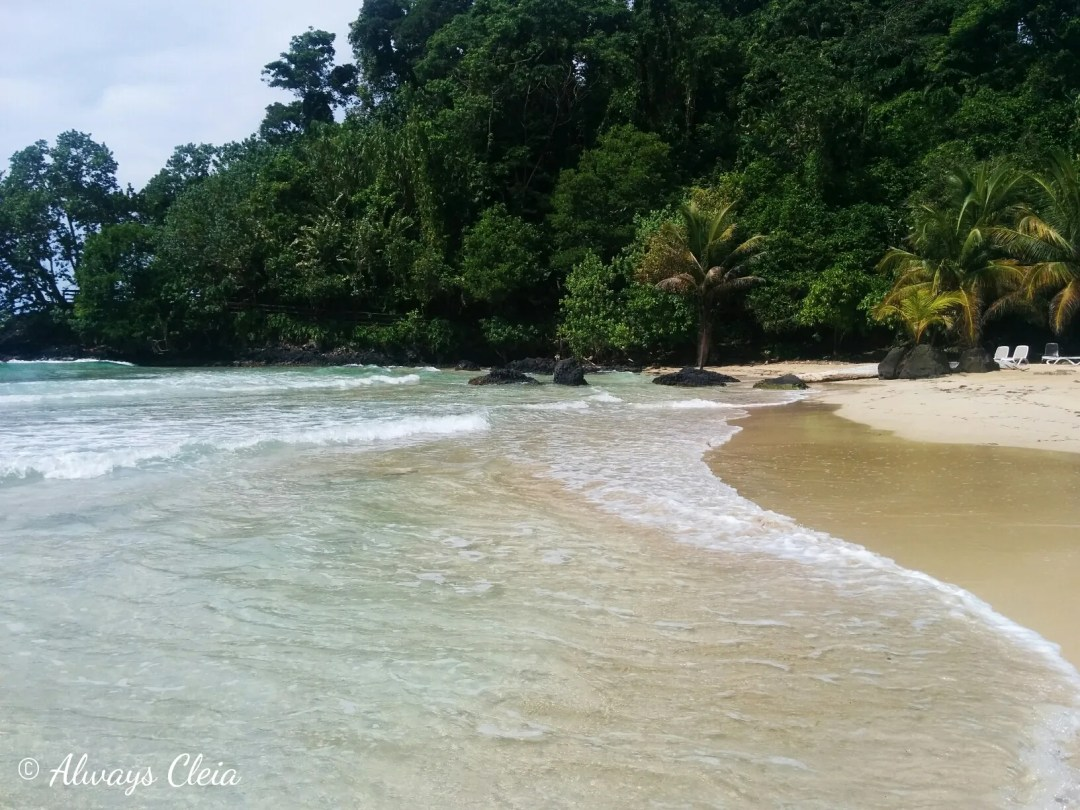 Bocas Del Torro | Red Frog Beach