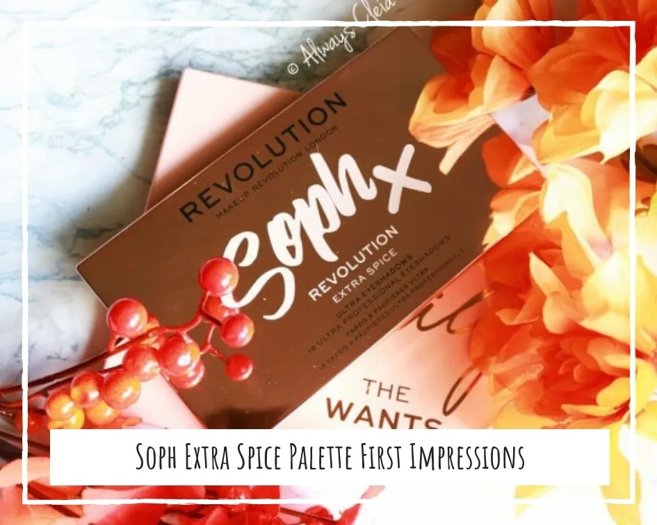 Revolution X Soph Extra Spice Palette First Impressions