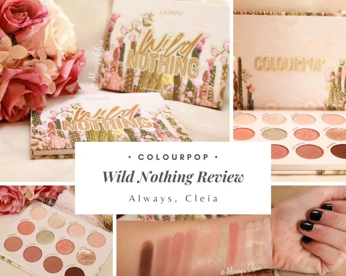 ColourPop Wild Nothing Palette Review + Swatches + 2 Looks