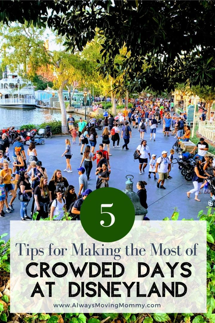 5 Tips for Dealing with Disneyland Crowds | AlwaysMovingMommy.com