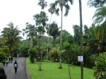 Bogor Botanical Gardens Kebun Raya19