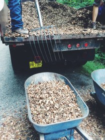 First, we divided into two teams: raking the mulch and moving it back and forth.