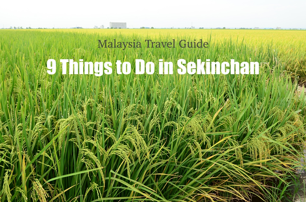 9 Things To Do in Sekinchan @ Malaysia