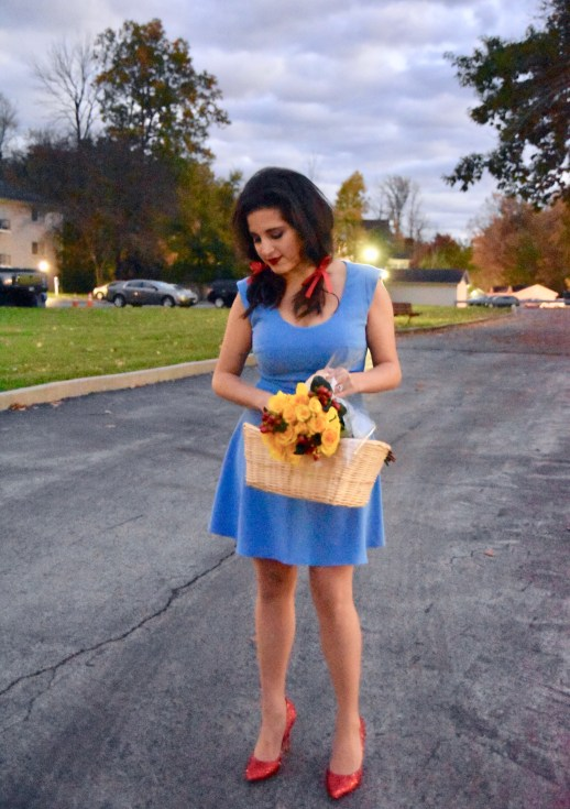 A2F Wizard of Oz Dorothy full look