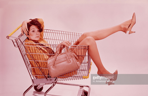INTJs are Contextual Shoppers. |INTJ General Shopping Habits. Photo Credit: H. Armstrong RobertsWoman in shopping cart