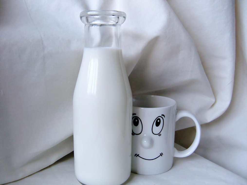 koemelk is slecht voor je goed gezond