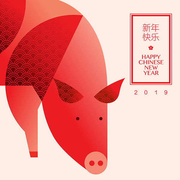 The Year of the Pig: Horoscope and predictions for 2019