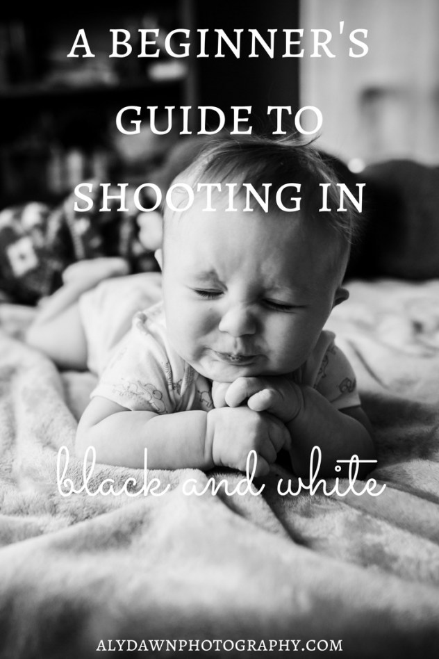 A Beginner's Guide to Shooting in Black and White