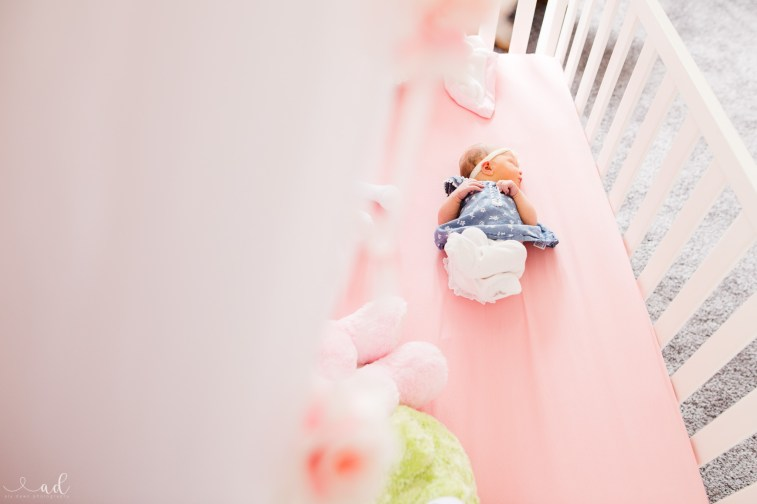 Indiana Newborn Lifestyle Photographer