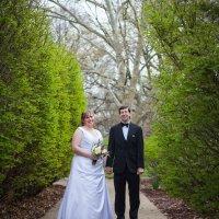 Beth & David - 4.18.15