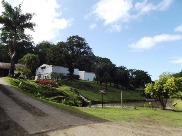 Fonds Préville, Rhum J.M Distillery, Macouba, Martinique