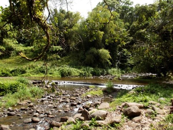 Coeur Bouliki, St Joseph, Martinique, River