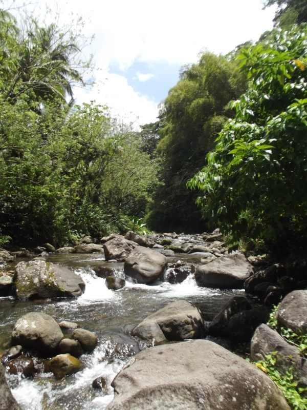 Grand Riviere, Martinique