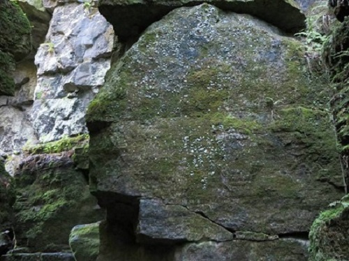 This is a natural rock formation they believe resembles the head of an Indian Chief. What do you think?