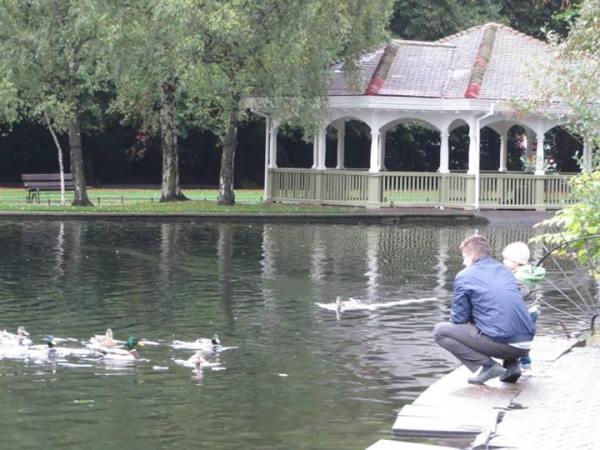 St. Stephen's Green, Dublin, feeding ducks
