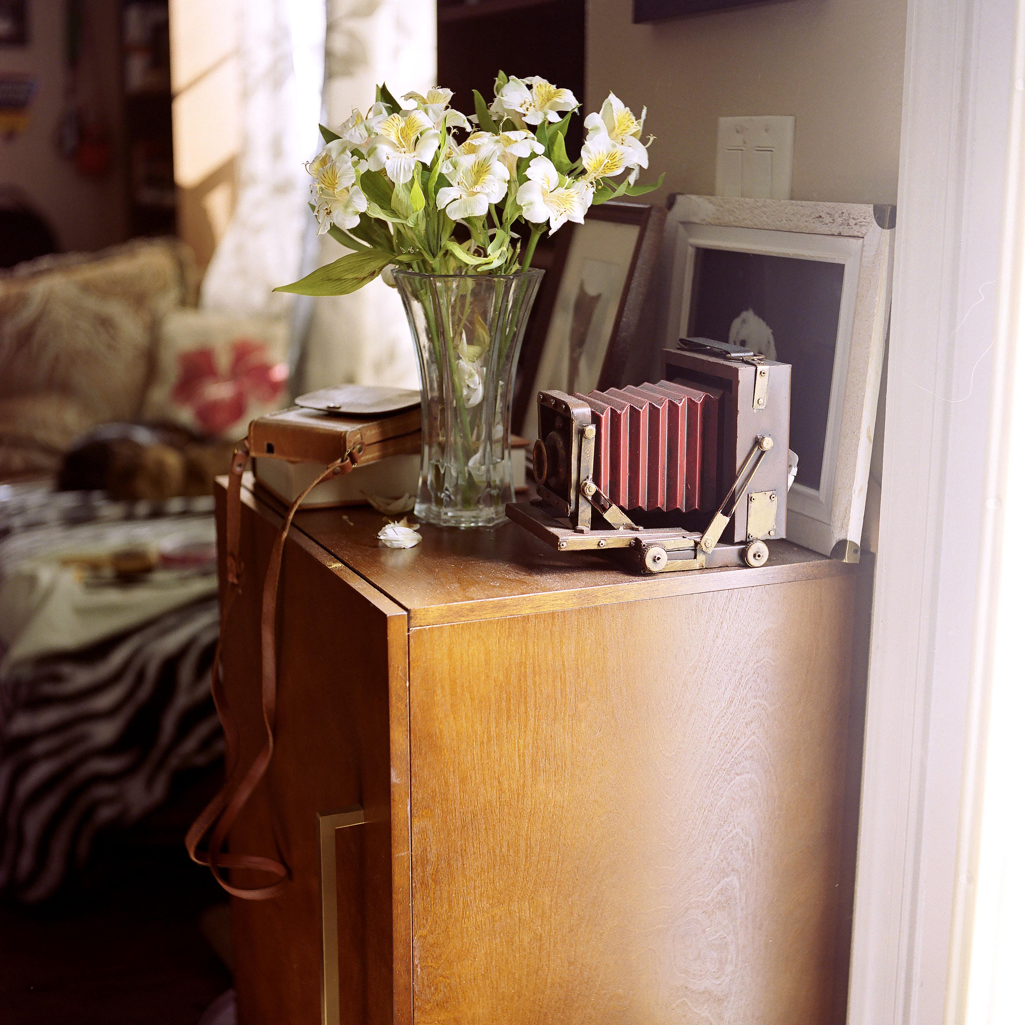 Rolleiflex Automat with Kodak Portra 400