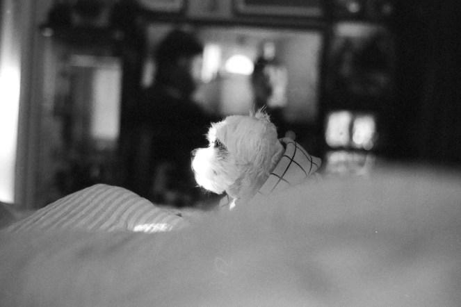 Leica M2 Arista EDU 400 at 800