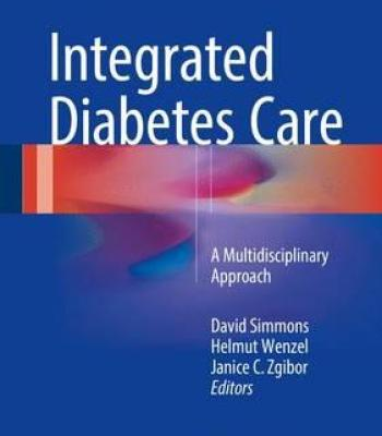 Integrated Diabetes Care 2017 PDF
