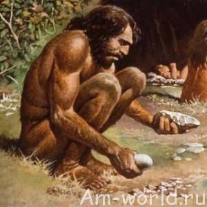 Человек произошёл от обезьяны?