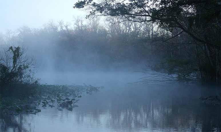Отравление рыбаков на озере Сюрзи