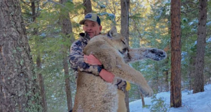 Alleged Capitol Rioter To Be Detained For Illegally Shooting Mountain Lion