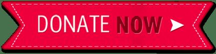 christmas-donate-button