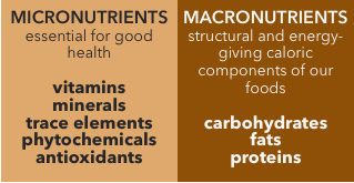 image of simple table showing micro-macronutrients-table
