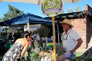 Plymouth Farmers Market