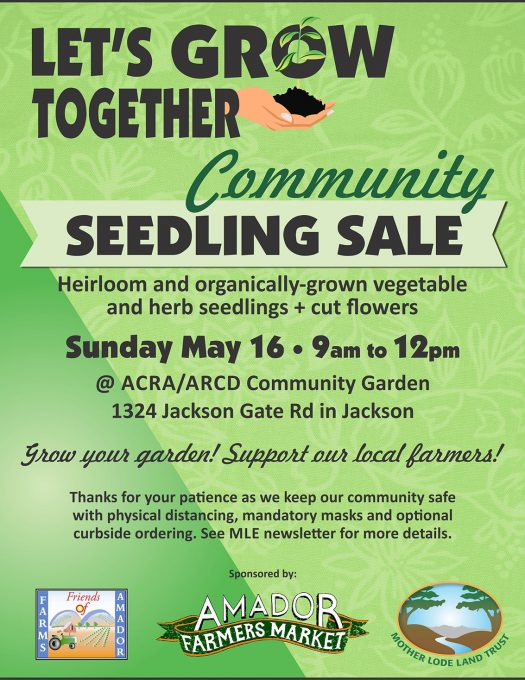 Community Seedling Sale