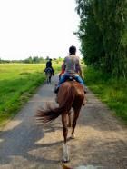 Riding Copenhagen