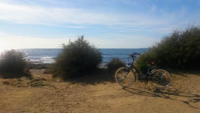 Palma di Maiorca in biciclettaq