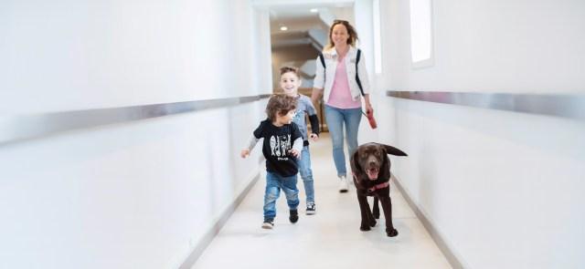 Andare in vacanza con il cane alle Baleari