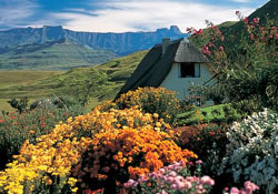 Garden, chalet and view at Hlalanathi Resort