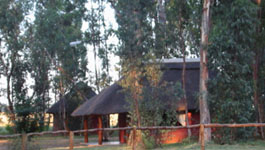 One of the stand alone units at Bingelela Lodge