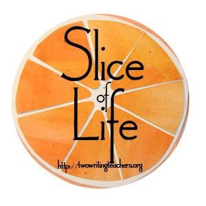 Thirty-one days of stories as part of the Slice of Life Story Challenge, hosted by Two Writing Teachers