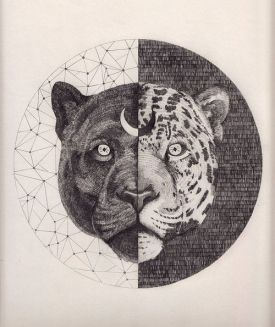 Peter Carrington Illustration